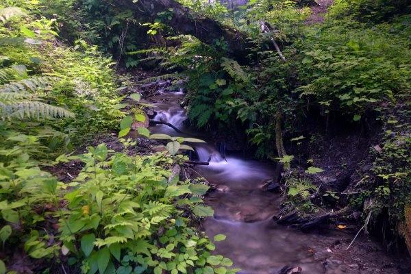 厚別川支流三滝の沢
